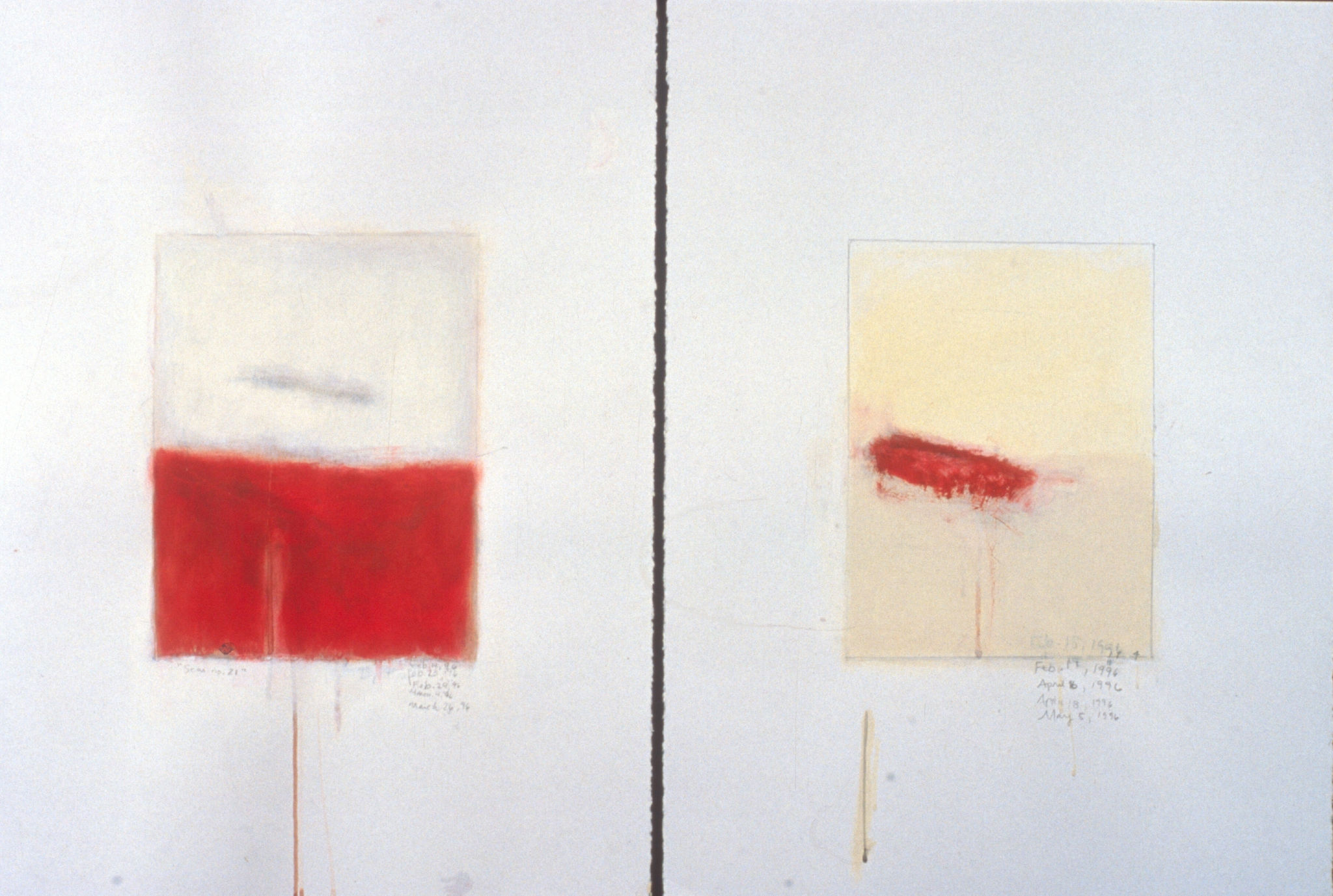 Scar March 6 – May 3 1996 and Scar Feb. 13 – May 30 by Antonietta Grassi.